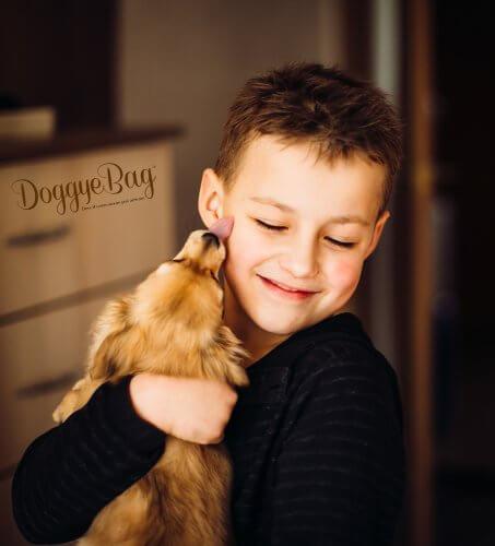 Doggye Bag