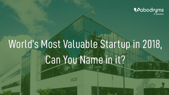Most valuable Startup 2018